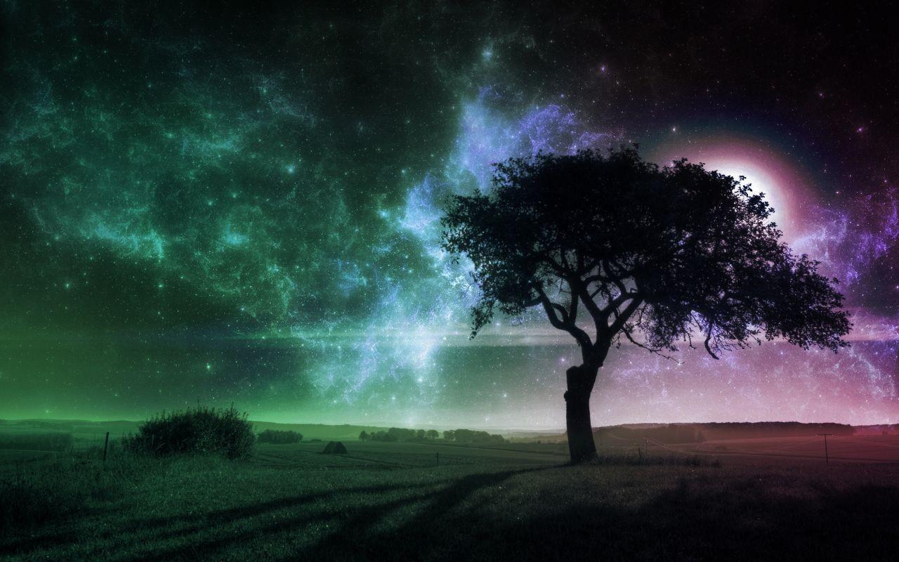 6 слов, которые трогают за душу