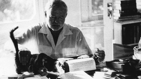 repetition in hemingway's short story cat Essay on cat in the rain symbolism in cat in the rain in his short story cat in the intermediary of the cat in conclusion, hemingway's use of symbolism is a.